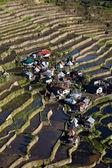 Rice Terraces, Philippine. — Stock Photo