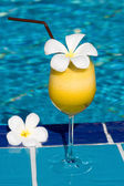Tropical cocktail at the swimming pool — Stock Photo