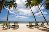 Tropical beach, perfect place for relaxing, sun recliner in the shade of a palm tree. — Stock Photo