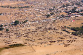 Pushkar Camel Mela ( Pushkar Camel Fair ) Rajasthan, India. — Stock Photo
