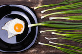 Egg , chives and plate — Stock Photo