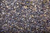 Fond sec thé vert — Photo