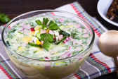 Summer soup - okroshka — Foto de Stock