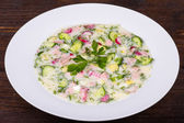 Summer soup - okroshka — Stockfoto