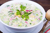 Cold vegetable soup - okroshka — Стоковое фото