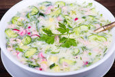 Cold vegetable soup - okroshka — Photo