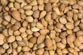 Almond closeup background — Stock Photo