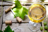 White wine — Stockfoto