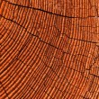 Timber close up — Stock Photo #13404347
