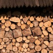 Part of wood — Stock Photo