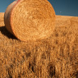 Single bale of hay — Stock Photo #18139131