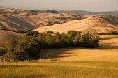 Toscana, Itália — Fotografia Stock