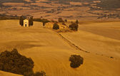 A typical scenic view in Tuscany,Italy — 图库照片