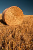 A single bale of hay — Stock Photo