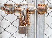 Metal lock door security protection padlock — Stock Photo