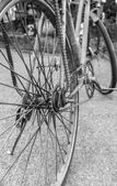 Old rusty bicycle closeup. back and white — Foto Stock