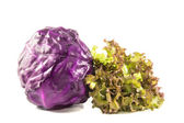 Oak Leaf lettuce and red cabbage isolated on a white — Stock Photo