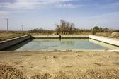 Water pool in Iran — Stock Photo