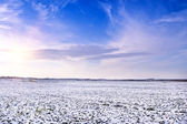 Snow landscape — Stock Photo