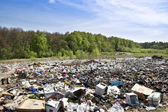 Landfill near the woods — Stock Photo