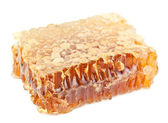 Full honeycomb — Stock Photo