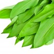 Wild garlic — Stock Photo #40367349