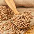 Stock Photo: Lentils in wooden spoon