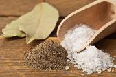 Pepper and salt — Stock Photo