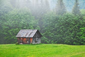 Old cabin — Stock Photo