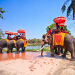 AYUTTHAYA, THAILAND - MARCH 7: Tourists on an elephant ride tour of the ancient city on March 7, 2013 in Ayutthaya. — Stock Photo