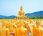 Boeddhabeelden, gouden buddha, thailand, Azië — Stockfoto