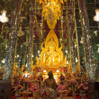 Golden Buddha statue at Cathedral glass, Temple in Thailand — Lizenzfreies Foto