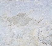 фактура мраморная мраморные фон — Стоковое фото