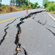 Cracked surface of an asphalt road — Stock Photo