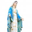 Virgin Mary Statue in Roman Catholic Church — Stock Photo #28822223