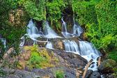 在森林里瀑布 — 图库照片