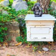 Beekeeping bees — Stock Photo #36059553