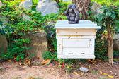 Beekeeping bees — Stock Photo