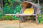 Cart Cocoon — Stock Photo