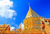 Provincie tempel chiang mai — Stockfoto
