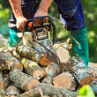 Man cutting firewood — Stock Photo