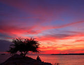 Sunset blue sky — Stock Photo