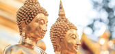 Golden buddha nel tempio — Foto Stock