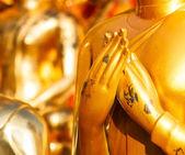 Hand of Buddha — Stock Photo