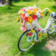 Flowers on bicycle — Stock Photo #37203769