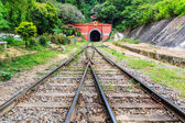 Tutnnel Railway — Stock Photo