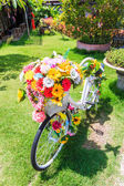 Flowers on a bicycle — Stock Photo
