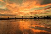 Silhouettes landscape — Stock Photo