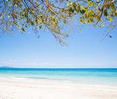 Tropicales y playa de arena de mar — Foto de Stock