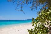 Beach and tropical sea sand — Stock Photo